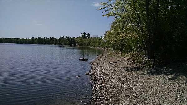 Unity Pond - Mid-Maine Bass Fishing